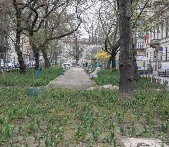 Kary i nowy przetarg na dokończenie przebudowy placu Biskupiego [ZDJĘCIA]