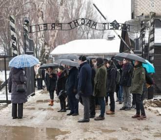 Auschwitz. Rekordowa frekwencja i zmiany w zwiedzaniu