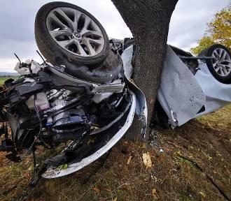 Samochód owinął się wokół drzewa. Kierowca przeżył [ZDJĘCIA]
