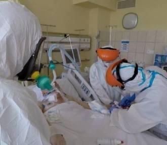 Koronawirus w woj. śląskim. 662 nowe przypadki zakażenia