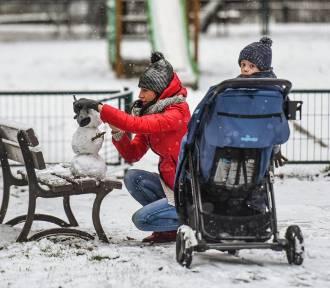 Do Bydgoszczy przyszła zima [zdjęcia]