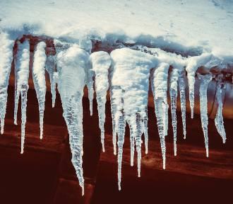 TOP 28 najniższych temperatur w Polsce z ostatnich 100 lat. Szok, jak zimno