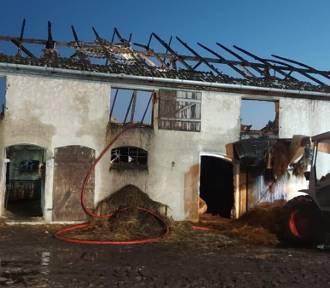 Groźny pożar budynku inwentarskiego w Nowym Targu - w akcji 10 zastępów strażaków