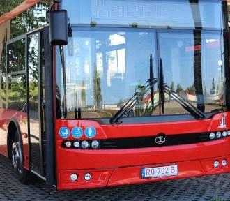 Jedziesz? Sprawdź. Są zmiany w rozkładzie jazdy autobusów w Nowej Soli