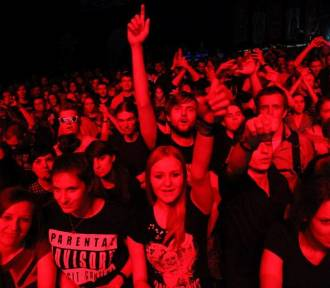 Eliminacje do Przystanku Woodstock 2017: Nocny Kochanek najlepszy!