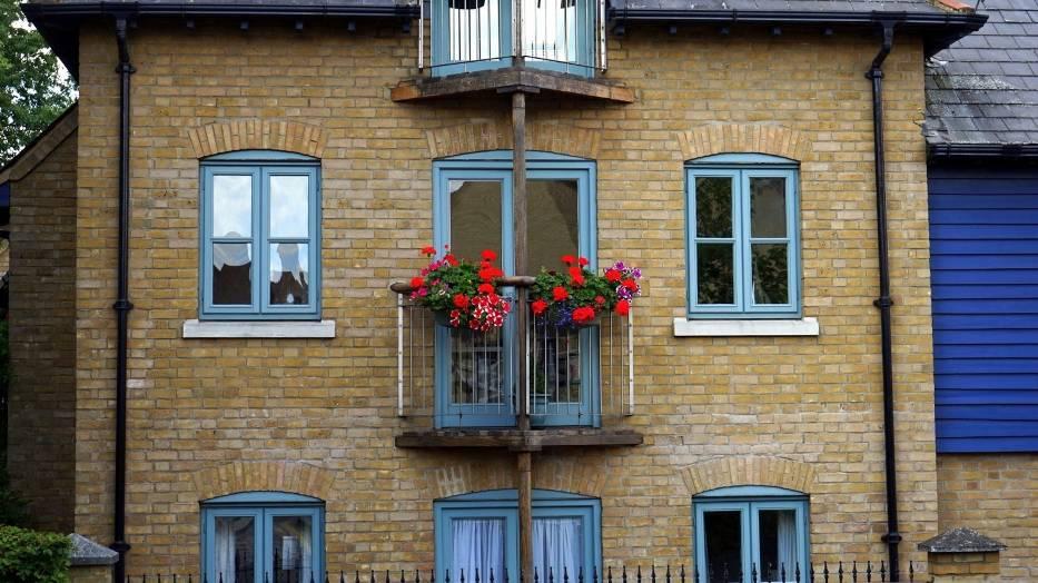 Pierwsze kwiaty na balkonie