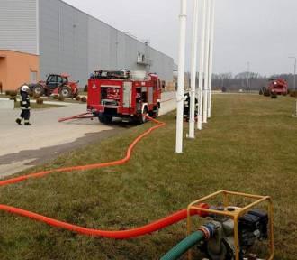Pożar w Rzucewie (kwiecień 2018). Ogień wybuchł w zakładach Grupy Producentów Owoców i Warzyw