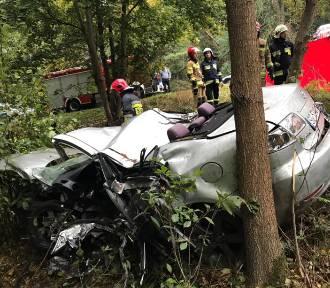 Śmiertelny wypadek w gminie Rusiec. Auto uderzyło w drzewo, kierowca nie przeżył