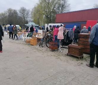 Niedzielna giełda w Koszalinie w majówkę. Tłumy mieszkańców [ZDJĘCIA]