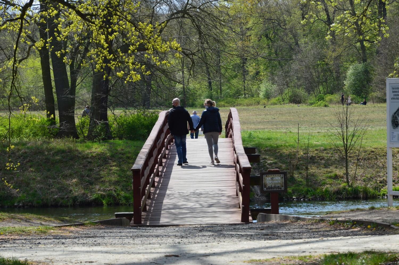 Park Książęcy w Żaganiu