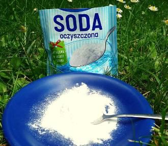 Soda oczyszczona w ogrodzie. Zobacz, do czego się przyda