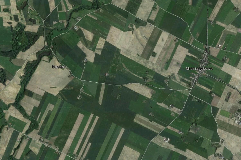 Bachor - osada w Polsce położona w województwie kujawsko-pomorskim, w powiecie brodnickim, w gminie Górzno