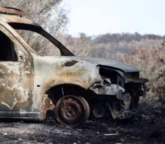 Pożar samochodu na drodze wjazdowej do Nysy. W akcji trzy zastępy strażaków