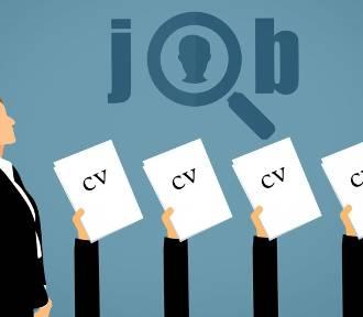 5 elementów CV, które mają największy wpływ na wybór kandyda