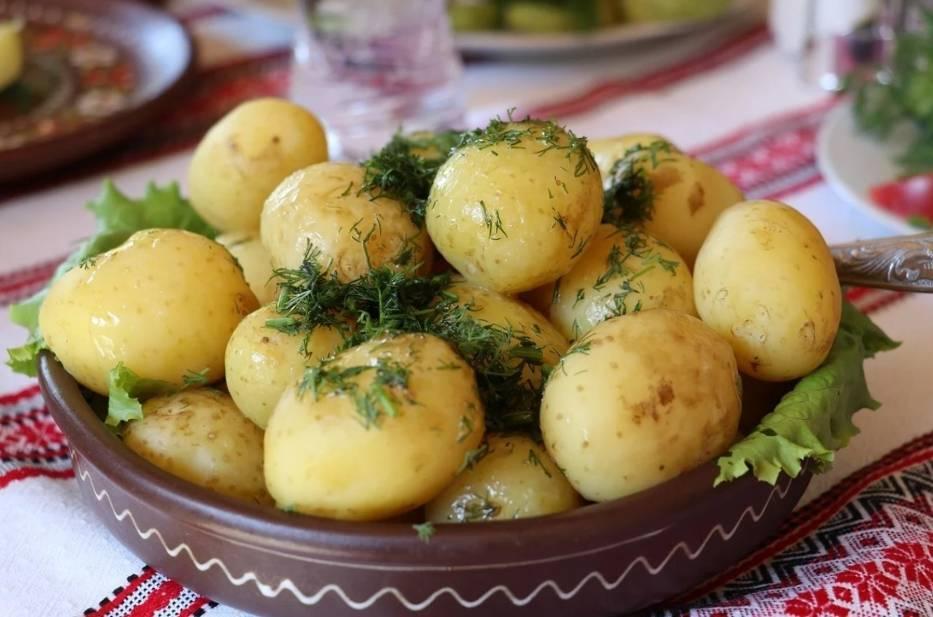 Mateusz Morawiecki zapowiedział, że bon gastronomiczny będzie działał podobnie jak wprowadzony w wakacje 2020 roku Polski Bon Turystyczny