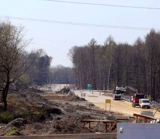 Ogromna wycinka w rejonie Nowego Nikiszowca. 22Architekci odpowiadają Koniecznemu