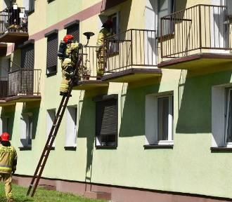 Straż interweniowała przy ulicy Krzywoustego. Na klatce schodowej pojawił się dym...
