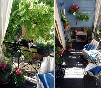 Aranżacja balkonu w bloku – remont w jeden weekend