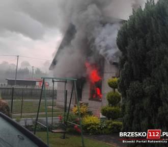 Pożar budynku gospodarczego koło Brzeska. Jedna osoba trafiła do szpitala