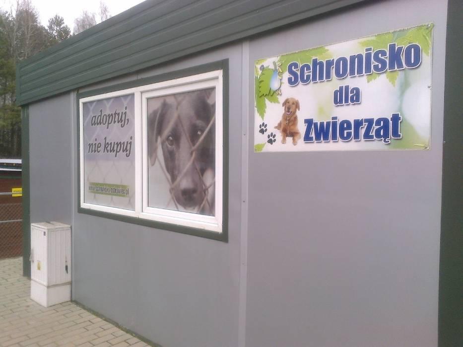 Schronisko dla zwierząt Janik
