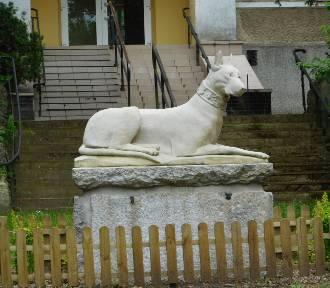 Pomnik psa, palmy i inne atrakcje Parku Zdrojowego w Szczawnie-Zdroju. GALERIA