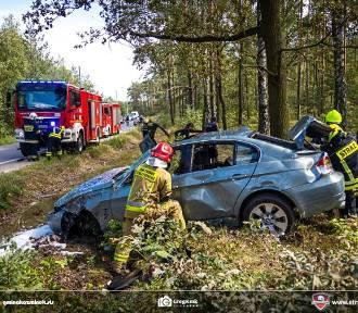 Wypadek w Murowańcu. Jechali pijani samochodem i rozbili się na drzewie. ZDJĘCIA