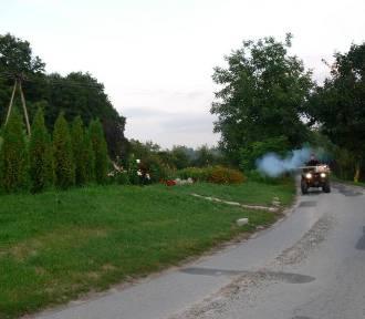 Walka z komarami w Sandomierzu trwa
