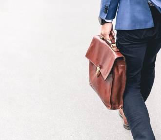 Firmy planują zwiększyć zatrudnienie. Gdzie warto wysłać CV?
