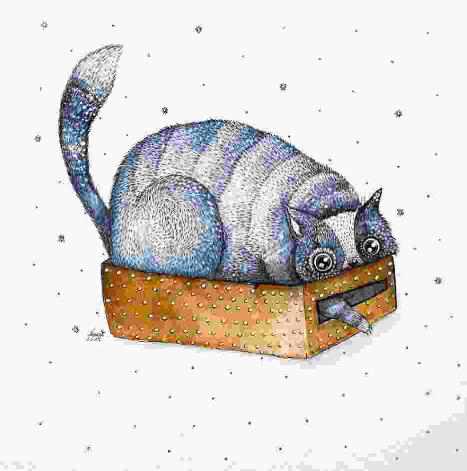 Dziwaczne koty