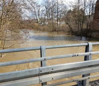 Jaki poziom rzek w Tomaszowie?