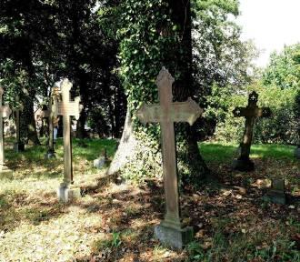 Lapidarium, pomnik z orłem, ścieżka rowerowa... Jan Balewski zaprasza do Kobylanki