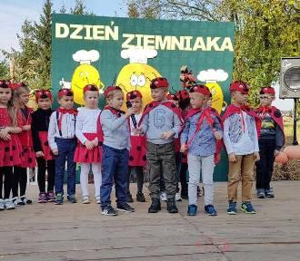 Święto Ziemniaka w Brudzewicach. Integracja i dobra zabawa (foto)