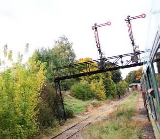 Koniec marzeń o rewitalizacji linii kolejowej nr 363?