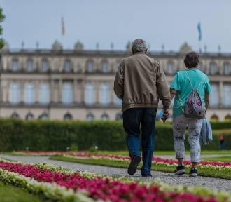 Kto dostanie czternastą emeryturę? Sprawdźcie, do kogo trafią pieniądze