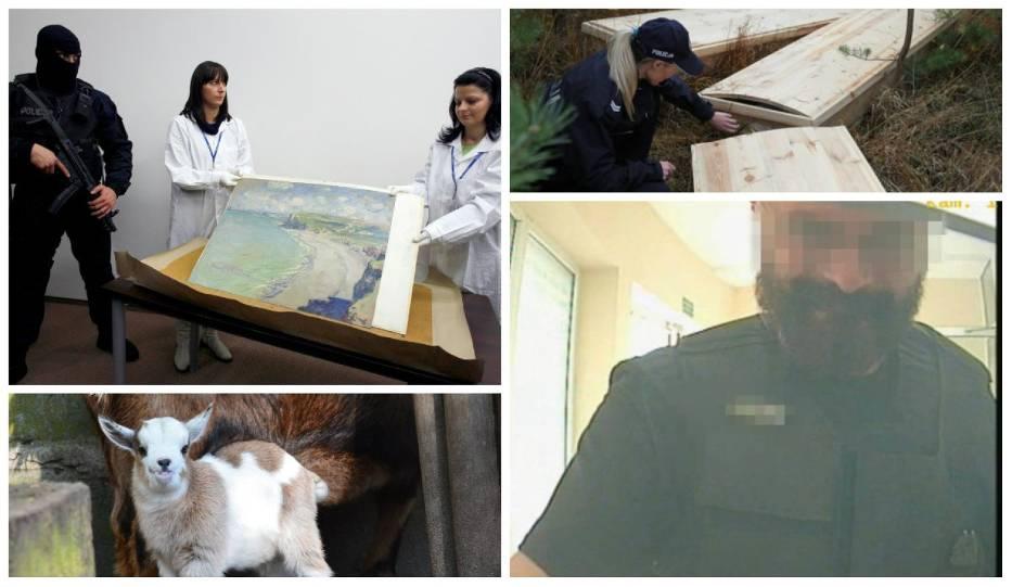 Najgłośniejsze i najdziwniejsze kradzieże w Wielkopolsce z ostatnich lat