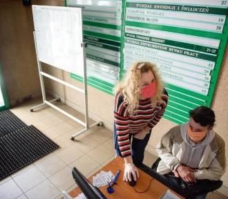 Oferty pracy z 4 maja 2021 r. z Brodnicy i powiatu brodnickiego