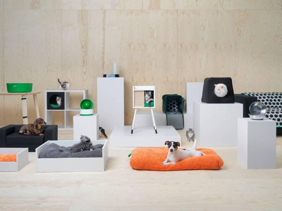 Nareszcie! IKEA otwiera się na zwierzęta!