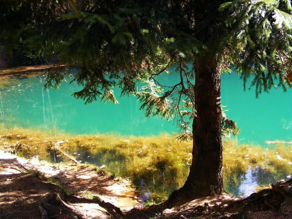jeziorko niebieskie