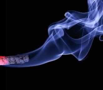 Zbadaj płuca – nie daj szansy rakowi. Zobacz, jak zapisać się na badania!