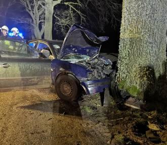 Wypadek w pobliżu miejscowości Guzy. Kierowca miał 2,5 promila alkoholu w wydychanym powietrzu