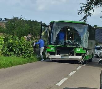 Wypadek autobusu PKS Gdynia na trasie Darzlubie - Leśniewo. Pojazd wyleciał z drogi!