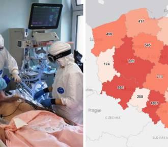 Koronawirus w woj. śląskim. Dużo zgonów i sporo nowych przypadków zakażeń