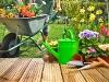 Pomóżmy ogrodowi obudzić się po zimie