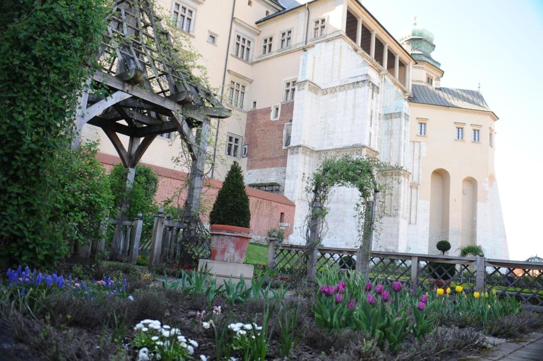 Wawelskie ogrody otwarte dla zwiedzających od 1 maja