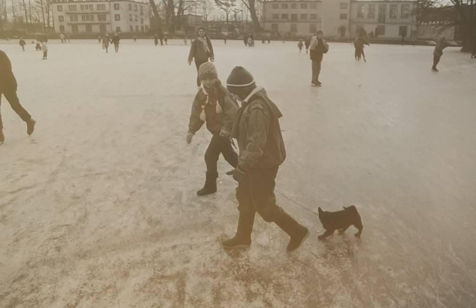 Zima w Kaliszu