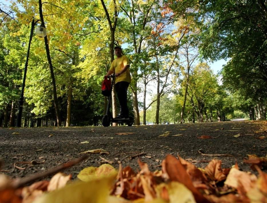 Wybierz się z nami na jesienny spacer po poznańskiej Cytadeli! Nasz fotoreporter uwiecznił na zdjęciach słoneczne momenty z największego parku w Poznaniu
