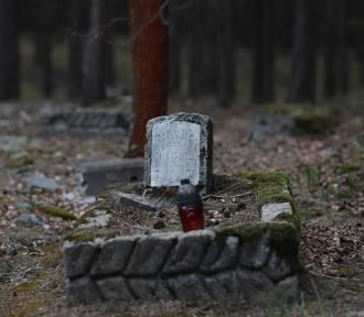 Zapomniany cmentarz w głębi lasu. Jakie tajemnice skrywa?