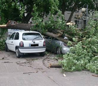 Silne wiatry w Toruniu. Strażacy interweniowali kilkadziesiąt razy [ZDJĘCIA]
