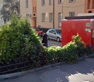 Perełki Google Street View. Dziwne, śmieszne, niektóre absurdalne! Są też z Białegostoku! [ZDJĘCIA]