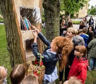 Plenerowa biblioteka w parku Kochanowskiego coraz uboższa. Książki znikają w dużych ilościach